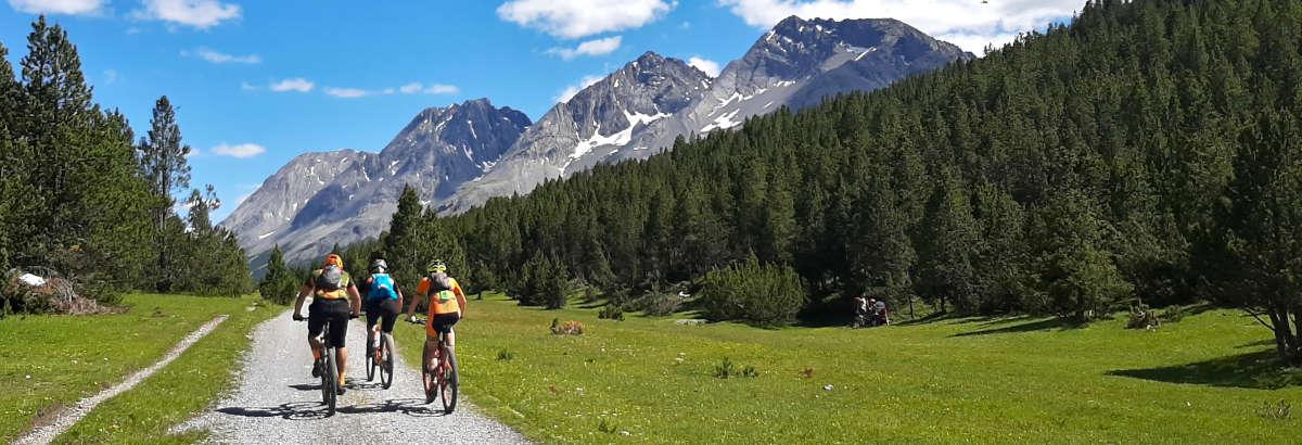 Bormio Ski Bike il noleggio di biciclette a Bormio